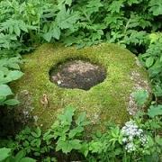 Šauklių akmuo su plokščiadugniu dubeniu