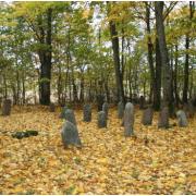 Ylakių žydų senosios kapinės