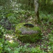 Šauklių senovės kulto vieta ir Šauklių senovės kulto vietos akmuo su plokščiadugniu dubeniu